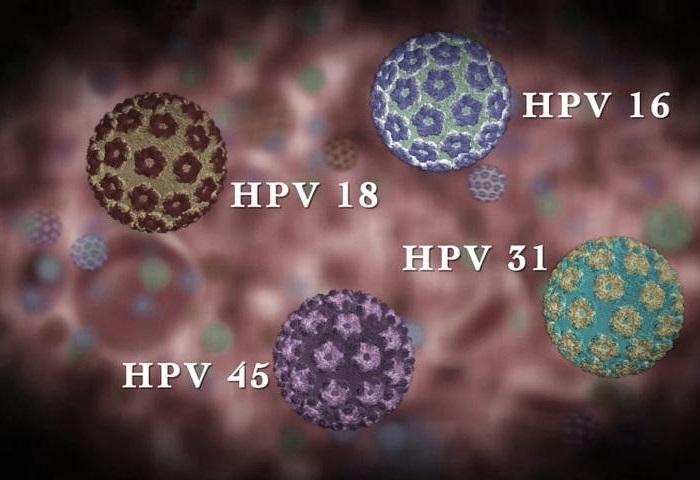 Особенности ВПЧ 16 типа